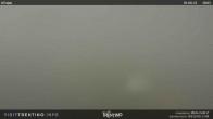 Pajon, Trentino