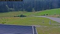 Willingen - Biathlon Roller Ski